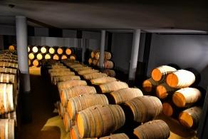04132018_Douro_River_Sandeman_Winery_barrels_750_6398_resize